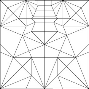 Buttefly/Crease Pattern